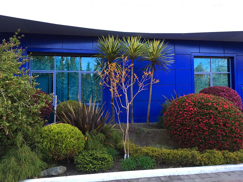 "Океанариум ""Sochi Discovery World Aquarium"""